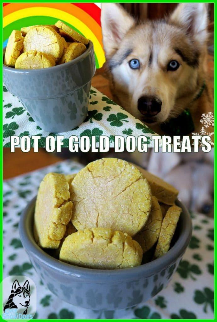 DIY St Patrick's Day Dog Treats