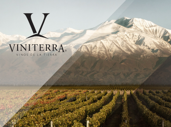 Viniterra vineyard at base of snowy mountain - producer of Malbec Special Edition by Viniterra 2018