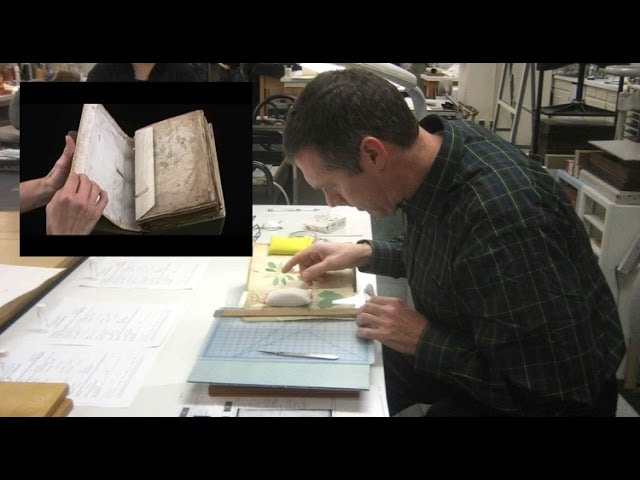 Russian Mathematicians Solve the Mysterious Voynich Manuscript  Sddefault
