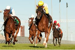 Lady Speightspeare wins the Natalma Stakes at Woodbine