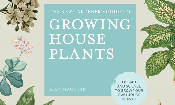 Cover of The Kew Gardener's Guide to Growing House Plants