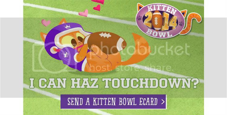 Kitten Bowl & Valentin...