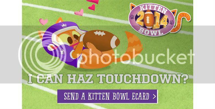 Kitten Bowl & Valentin...