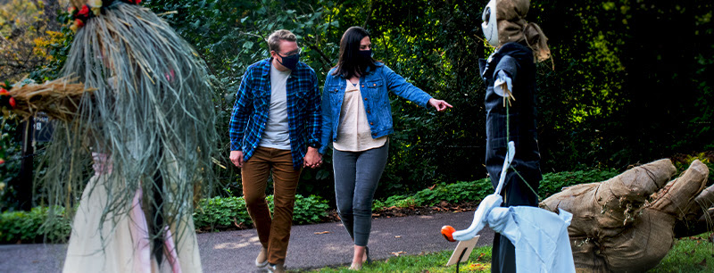 Young couple holding hands looking at Scarecrows