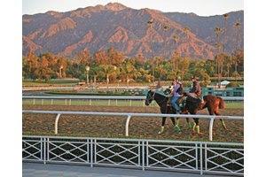 Early morning at Santa Anita Park