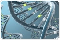 Interactions That Hold DNA Together