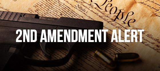 2nd Amendment Alert