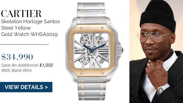 Skeleton Horloge Santos