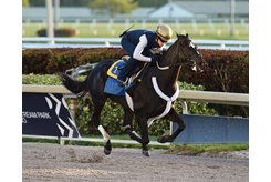 Independence Hall trains at Gulfstream Park