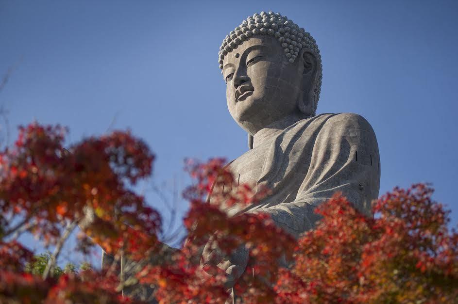 Tượng phật, lớn nhất thế giới, Ibaraki, Nhật bản, du lịch nhật bản, Ushiku Daibutsu