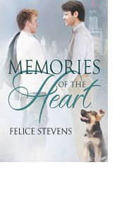 Memories of the Heart by Felice Stevens