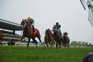 Hi Happy draws off to win the Man o' War Stakes at Belmont Park