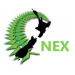 NEX - Online Teachers Network logo