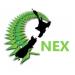 NEX - Online Teachers Network logo
