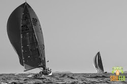 J/111 sailing Auckland, New Zealand offshore regatta