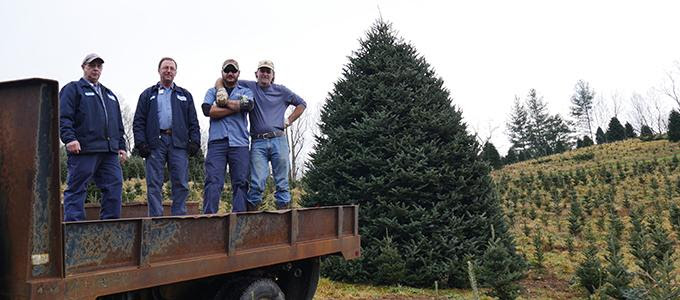 The Story Behind The Christmas Tree At Cannon Memorial