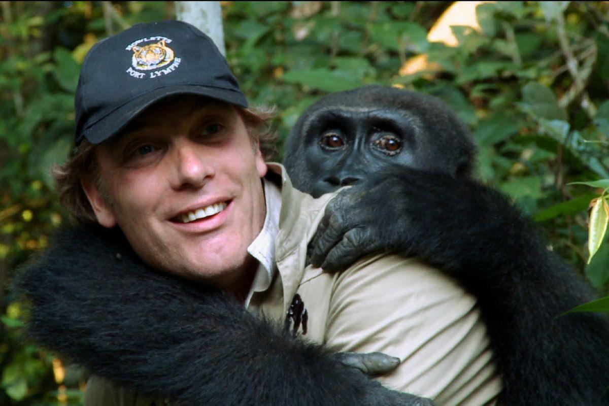 Nuôi 1 con khỉ đột rồi thả về tự nhiên, 5 năm sau người đàn ông bất chấp đi tìm lại và cái kết ngoài tưởng tượng - Ảnh 5.