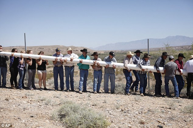 People power: People help erect a pole to hang a banner during a rally in support of Cliven Bundy near Bunkerville Nevada on Monday