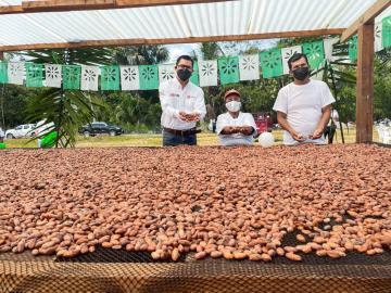 Agroideas impulsa comercio de cacao en la selva central