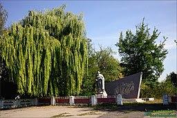 Братська могила радянських воїнів, Шеки