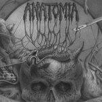 Anatomia - Bastardizing the Purity