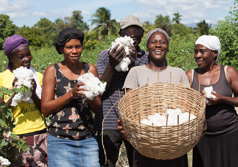 Smallholder Farmers Have Reason to Smile in Haiti