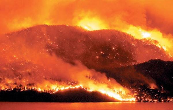 The firestorm of 2003