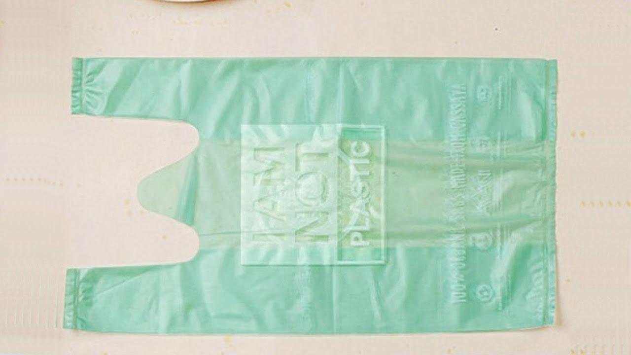 Biodegradable: Bolsas hechas de yuca al llegar al mar se disuelven en el agua
