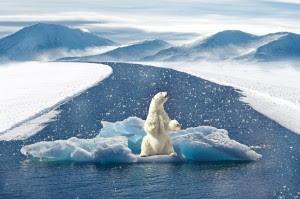 réchauffement climatique 2