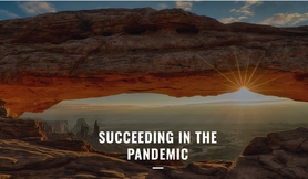 Succeeding in the Pandemic image