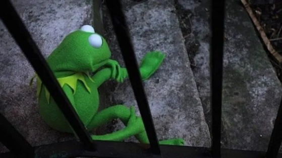 Oh FFS!!! Now They Want to Cancel Kermit! Poor Kermie :(  Image-565