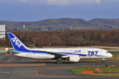 04304 | Phoenix 1:400 | Boeing 787-8 ANA All Nipon Airways JA817A | is due: January 2020