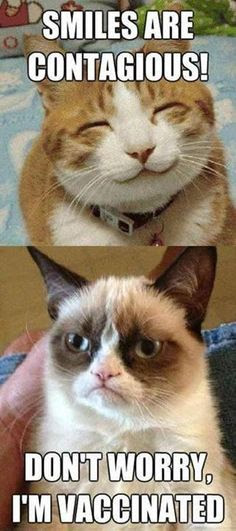 Grumpy Cat is vaccinated .. LOL so weird reminds me of my sister who dosnt smile