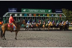 Horses race on the Polytrack at Turfway Park