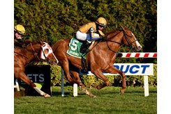 Curlin's Honor wins the 2019 Artie Schiller Stakes at Aqueduct Racetrack