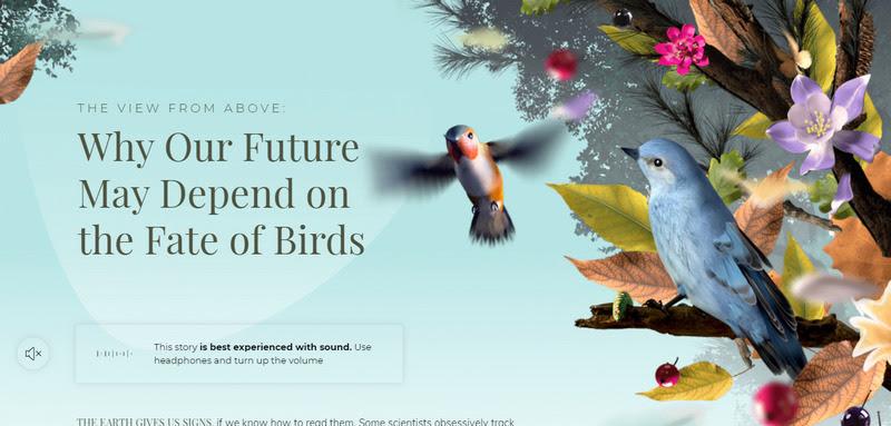 Моушн дизайн - анимированная 3D графика сайта nytimes.com