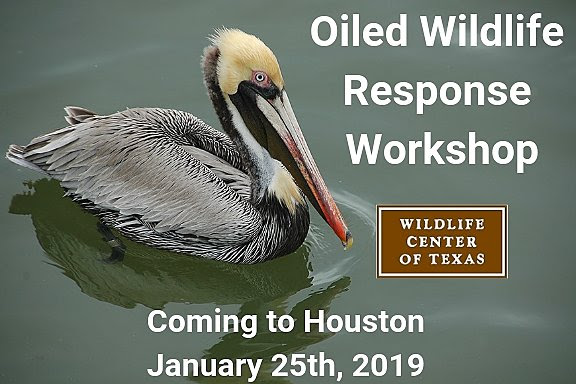 Oiled Wildlife Response Workshop @ Houston SPCA's Carruth Education Center  | Houston | Texas | United States