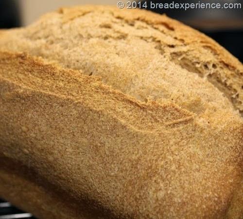 whole-grain-spelt-bread2_27