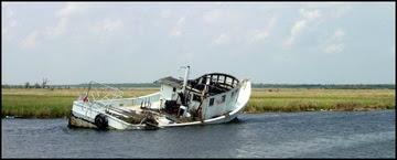 FishNews 246 Gulf ADV