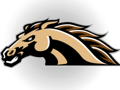 Image result for western michigan logo blank background