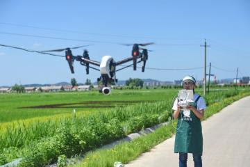 China enseña a 100 millones de agricultores a usar teléfonos inteligentes