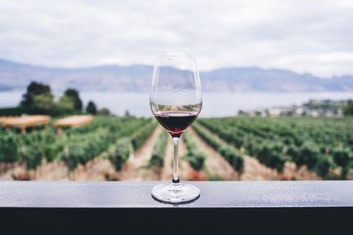 Claves para entender un vino