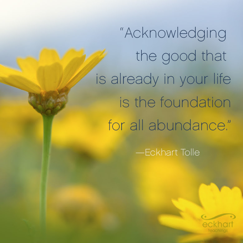 Acknowledging the good that is already in your life is the foundation for all abundance.