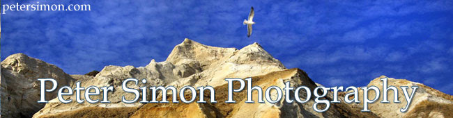 petersimonphotography3 2