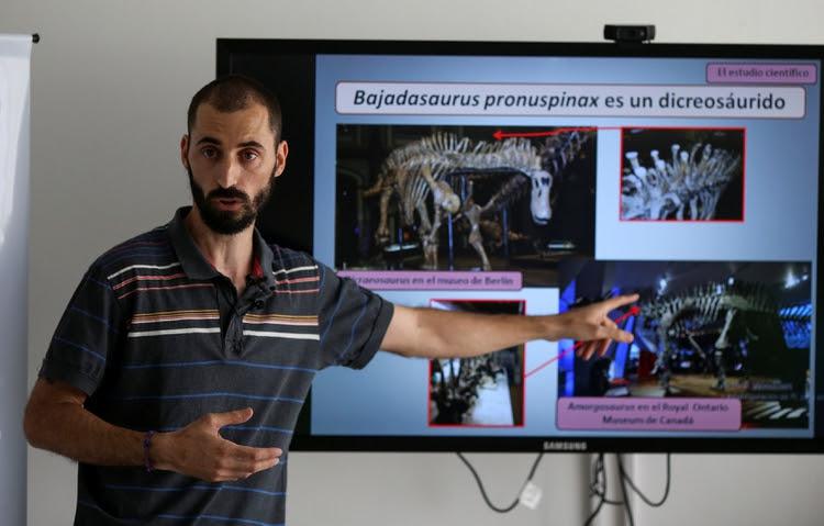 La nueva especie pertenece a la familia de los dicreosáuridos, distinguida por largas espinas que cubren su cuello y espalda REUTERS/Agustin Marcarian
