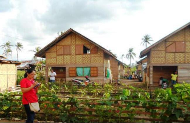 http://www.accionverapaz.org/images/accionverapaz/proyectos/tifon_filipinas_haiyan_2/3.JPG