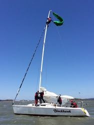 Johnny Heineken rescuing kite off J/105 masthead