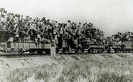 TrainWithEmployees1 (50K)