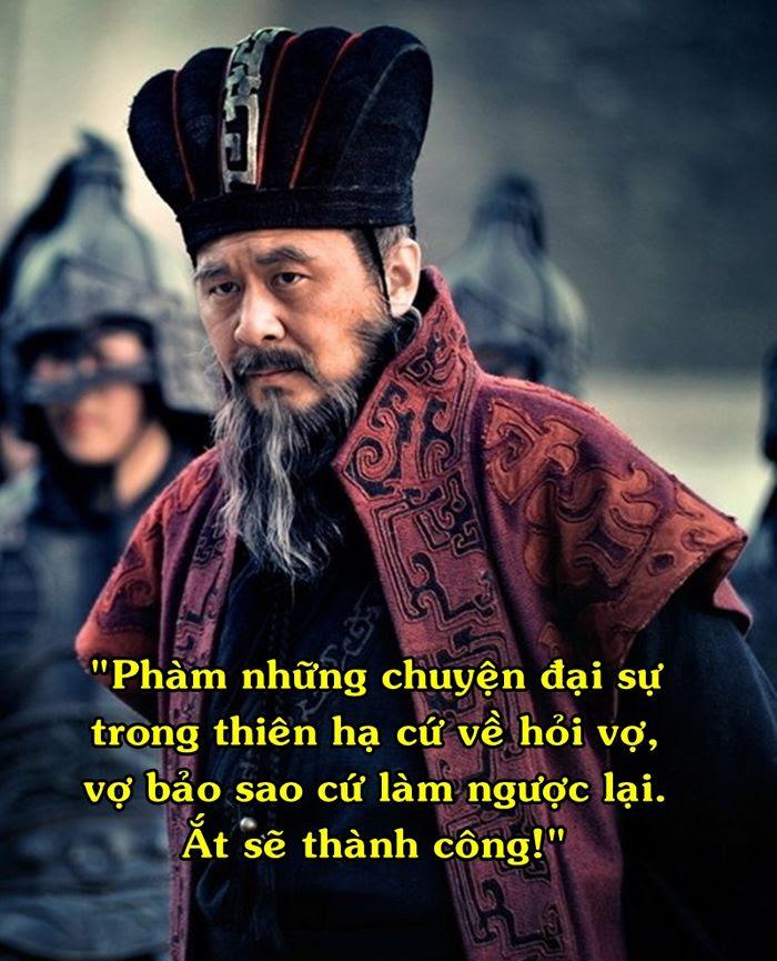 taothao 7