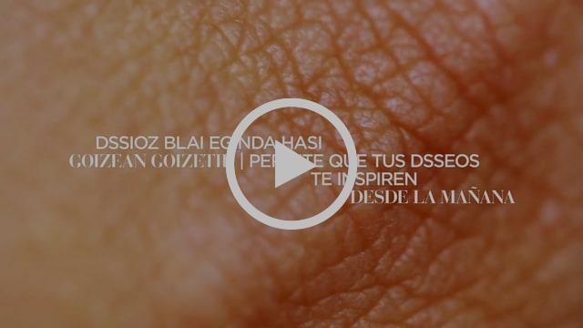 presentación_DSSirez_aurkezpena